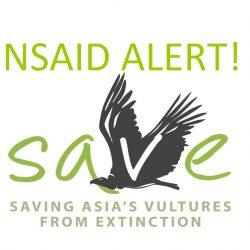 Logo-NSAID-ALERT