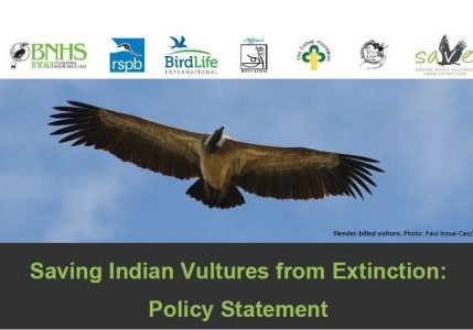 SAVE policy statement header page